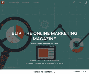 Our curated Online Marketing magazine, BLIP, includes articles from our favorite strategic thinkers and our experienced marketing team.