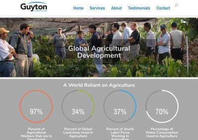 Guyton Strategies Web Presence