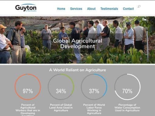 Guyton Strategies Pro One Page Site
