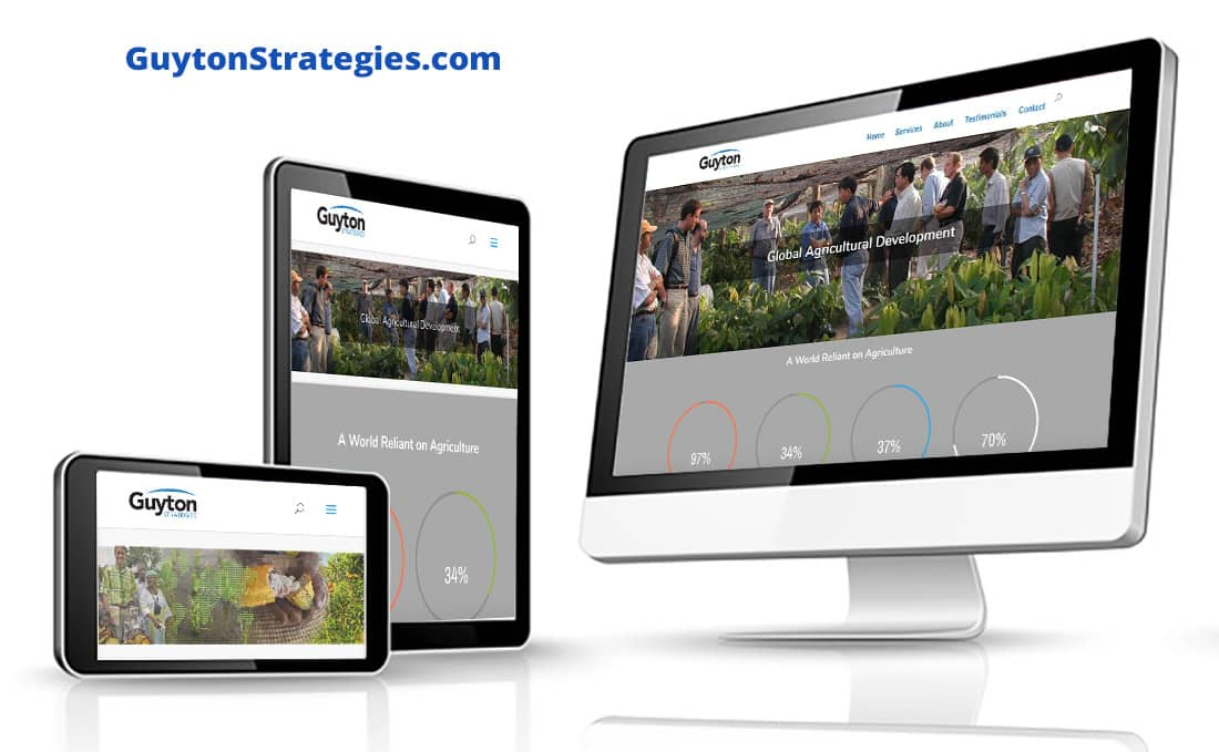 Webdirexion Built This Site for a Global Agricultural Consultancy, Guyton Strategies Pro Website