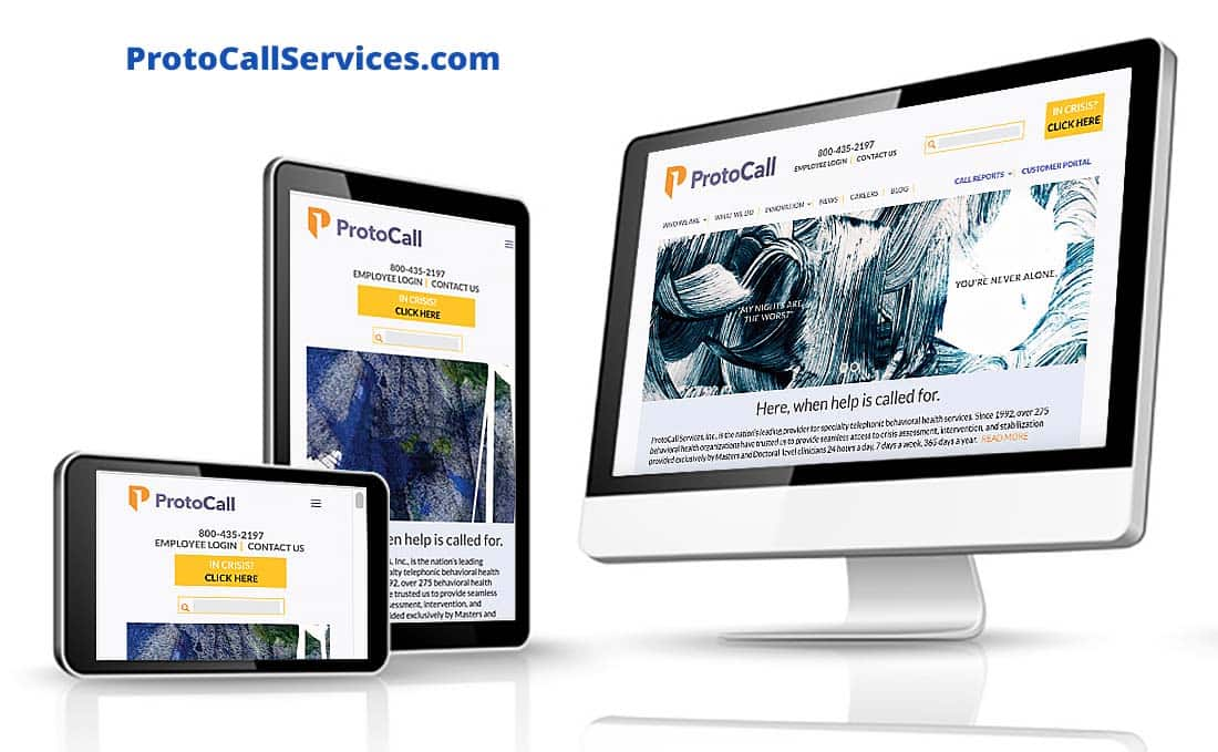 ProtoCall Services Professional Website Development, ProtoCall Services Pro Website