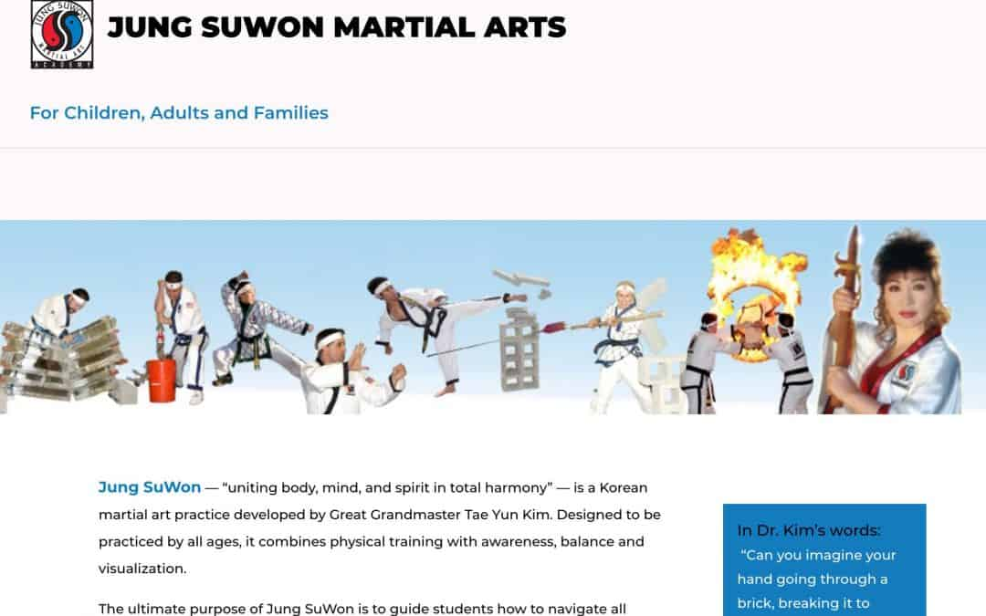 Jung SuWon Martial Arts Pro Website